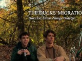 THE DUCKS' MIGRATION (2012)