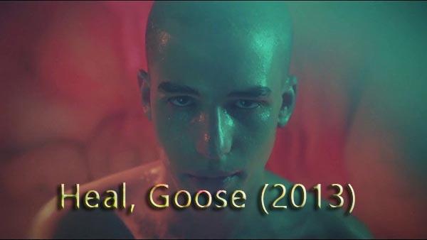 Heal, Goose (2013)