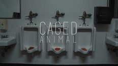 Caged Animal (2016) short film by Sam Van Pykeren